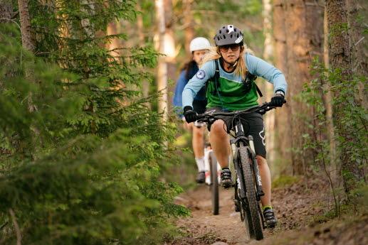 Mtb cyklist längs en skogsstig en varm sommmarkväll